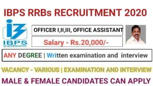 IBPS RRBs recruitment for Officer scale I II III Office assistant 2020