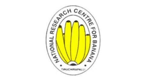 ICAR NRCB Young professional recruitment 2021